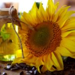 Sunflower Seed Oil